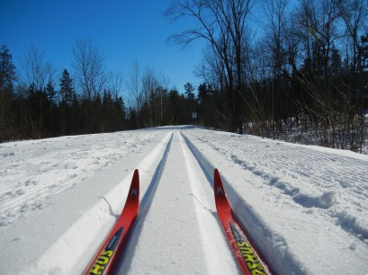A10-The Skis' Perspective