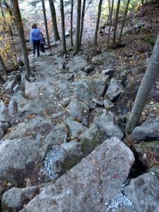 EZapata Trail Photos 2014 3
